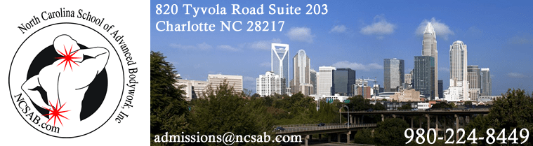 Charlotte Skyline - clinical / medical massage therapy school information in Charlotte, NC